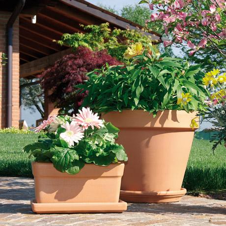 Vasi in terracotta per giardino degreaproduzione vasi in for Giardino casa classica
